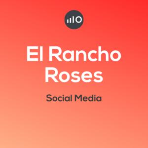 El-rancho-roses-Montse-Ferrer